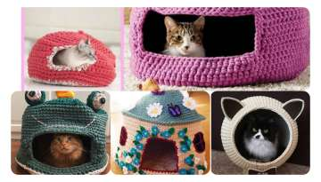 Knitting Cat House Models and Preparation